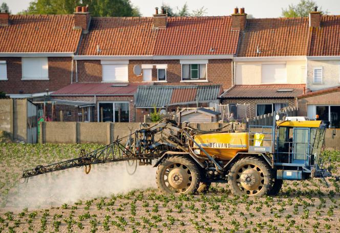 Un agriculteur répand des pesticides sur un champ de pommes de terre, àGodewaersvelde(Nord), en 2012.