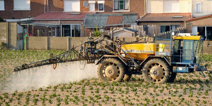 Paris, Lille, Nantes, Grenoble et Clermont-Ferrand interdisent les pesticides sur leur territoire