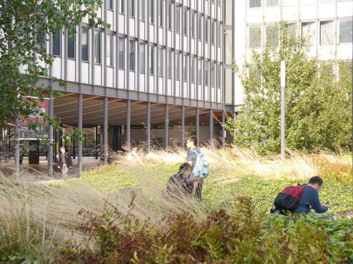 Le campus de Jussieu (Sorbonne université) (septembre 2016).