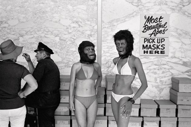 Concours de beauté «La Planète des singes», Century City, 1973 (série «College»).