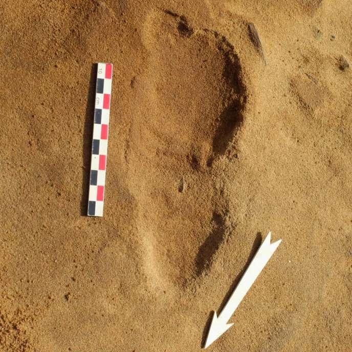 Empreinte de pas d'un Néandertalien mise au jour sur le site archéologique du Rozel (Manche), daté de 80000 ans.
