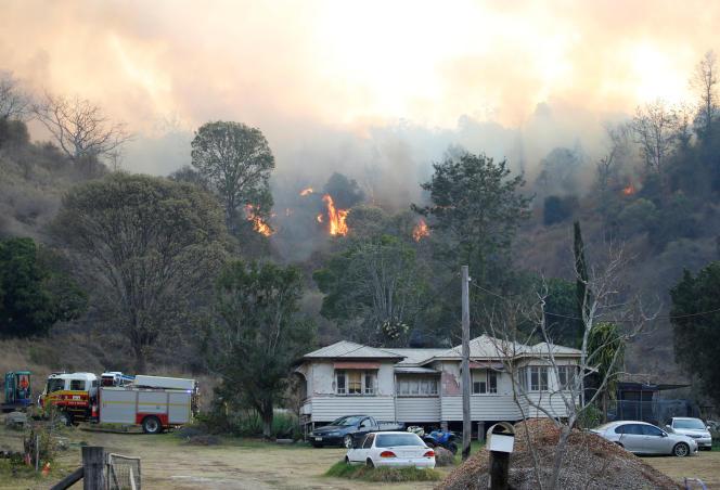 Près de Canungra, dans l'Etat australien du Queensland, le 6 septembre.