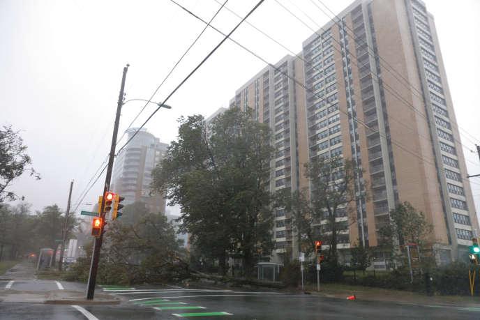 Halifax, capitale de la province de Nouvelle-Ecosse, se prépare au passage de Dorian.