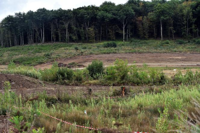 Une zone déboisée près de Lisle-sur Tarn (Tarn), en août 2017.