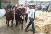 Au salon de l'élevage de Rennes, les éleveurs face aux défis du réchauffement climatique