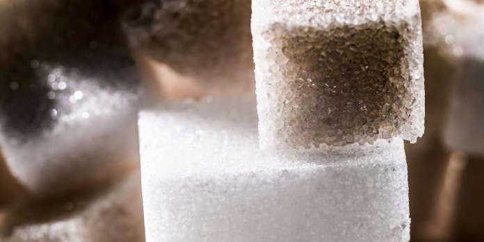 « Le sucre fond et avec lui les espoirs d'un retour rapide à meilleure fortune »