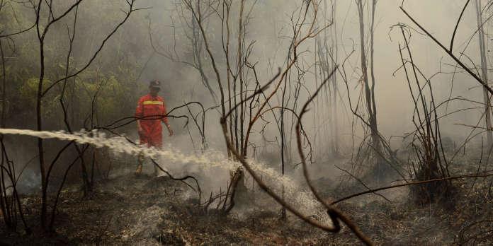 Feux de forêts en Indonésie : le président Joko Widodo reconnaît des « négligences »