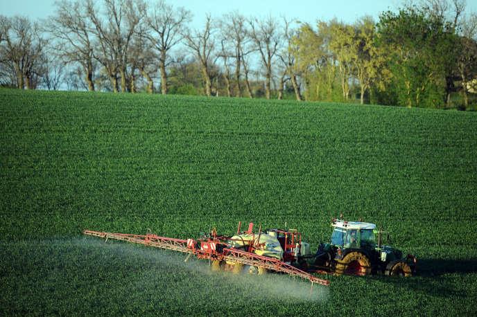 Epandage de pesticides sur un champ de blé dans le sud de la France.