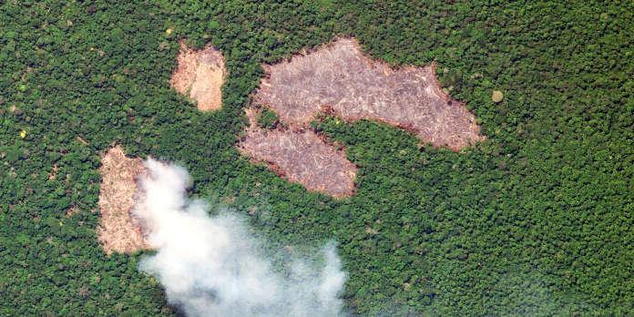 La politique incendiaire de Bolsonaro en Amazonie