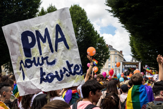 Une pancarte en faveur de la PMA brandie au-dessus du cortège de la Marche des Fiertés de Rennes, le 8 juin.