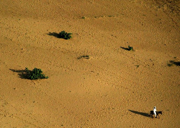 Un lit de rivière asséchée près de Bredjing, dans l'est du Tchad, en août 2004.