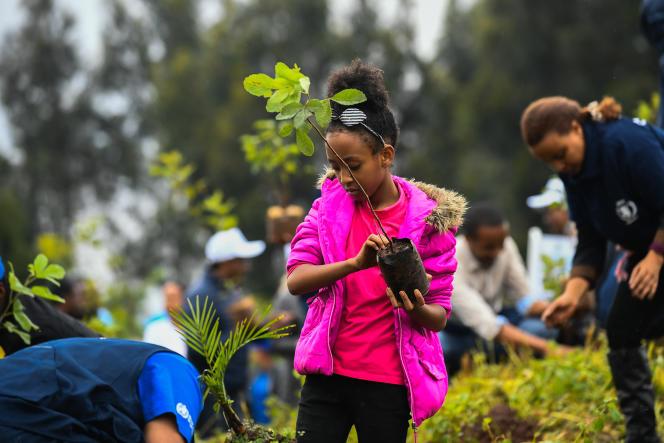 Une jeune fille participe à une campagne de plantation d'arbres à Addis-Abeba, en Ethiopie, le 28juillet 2019.