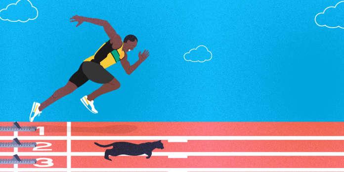 Mondiaux d'athlétisme : qui gagne au 100 m, Usain Bolt ou votre chat ?