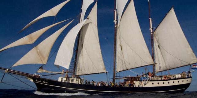 Planète : Toute l'actualité sur Le Monde.fr.D'Amsterdam à Santiago du Chili: 36 jeunes traversent l'Atlantique en voilier pour rejoindre la COP25