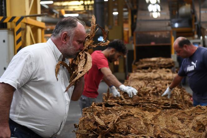 Eric Tabanou, le directeur de Tabac France, à Sarlat-la-Canéda (Dordogne), le 20 septembre.