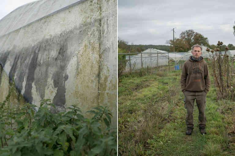 Le nuage de suie a laissé des traces noires entre autres sur les serres de Pascal Henache à Sommery, dans le Pays de Bray situé à 36,7km de l'usine Lubrizol.