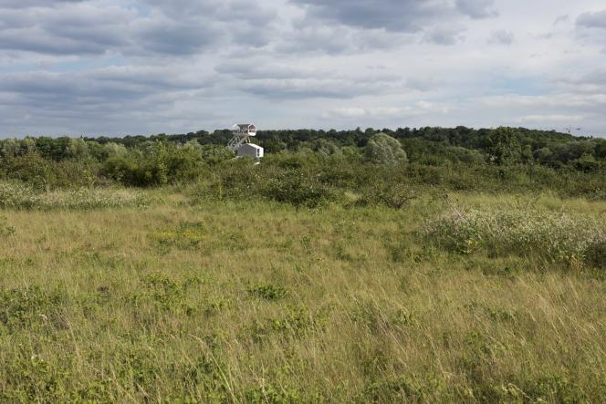 L'observatoire du Parc du peuple de l'herbe et la prairie sèche (2017).