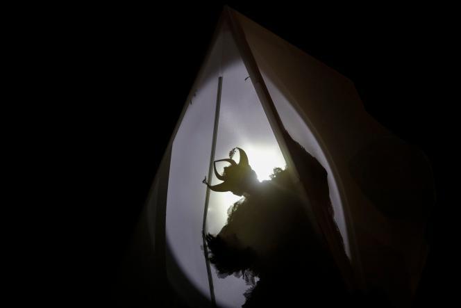 «La Nuit Blanche des Animaux», d'Annette Messager,au parc Montsouris (Paris 14e).