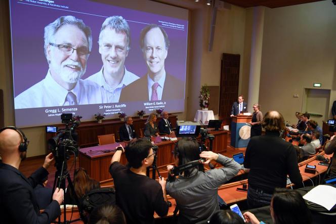 Le prix Nobel de médecine 2019 a été décerné à Gregg Semenza (à gauche), Peter Ratcliffe (au centre) et William Kaelin (à droite).