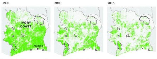 Evolution du couvert forestier (vert) en Côte d'ivoire entre les années 1990 et 2015.