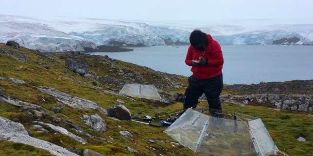 Climat : pourquoi les scientifiques sont plutôt plus prudents qu'alarmistes