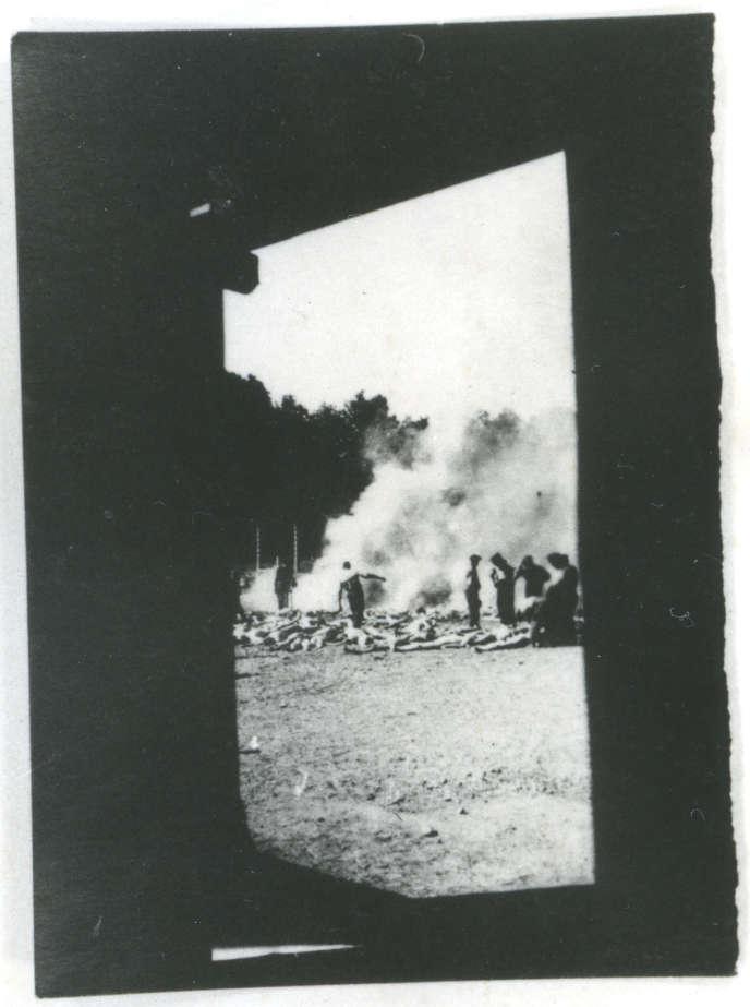 Une zone de mise à mort, Auschwitz-Birkenau, août (?) 1944.