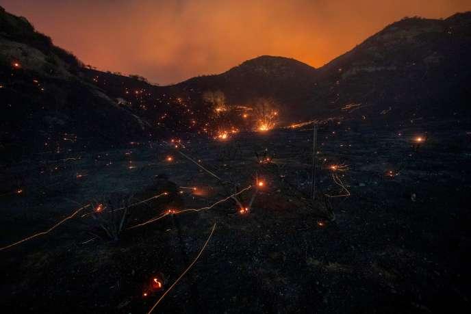 Une colline près de Los Angeles, vendredi 11 octobre, après une nuit de flamme.