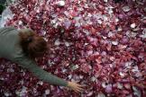 A Mexico, les déchets d'un marché de gros, en mars.