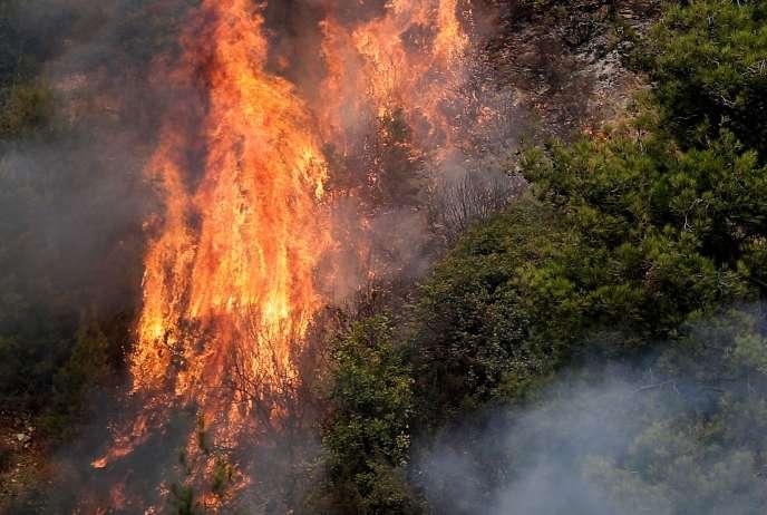 Un incendie dans la région montagneuse du Chouf, au sud de Beyrouth, mardi 15 octobre.