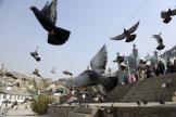 Des pigeons volent à l'extérieur du sanctuaire Karti Sakhi, à Kaboul, enAfghanistan, jeudi17octobre2019.