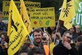 Des militants et des représentants de l'agriculture bio manifestent devant le Parlement européen de Strasbourg, le 22 octobre.