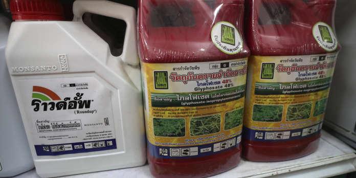 La Thaïlande va interdire le glyphosate et deux autres pesticides