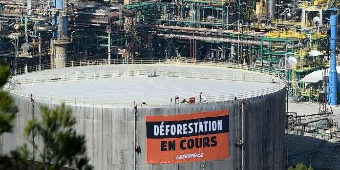 L'huile de palme importée par Total n'est pas 100 % durable, selon Greenpeace
