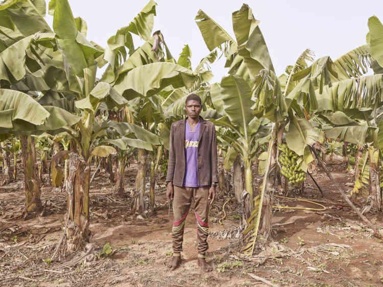«La plantation de bananes est proche du fleuve Gambie et c'est le seul espace vert de la région de Tambacounda. Moussa la protège de l'invasion des singes. »