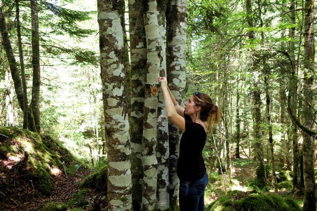 Elia Conte Douette, opératrice funéraire. Elle pilote le projet de la forêt cinéraire à Arbas.