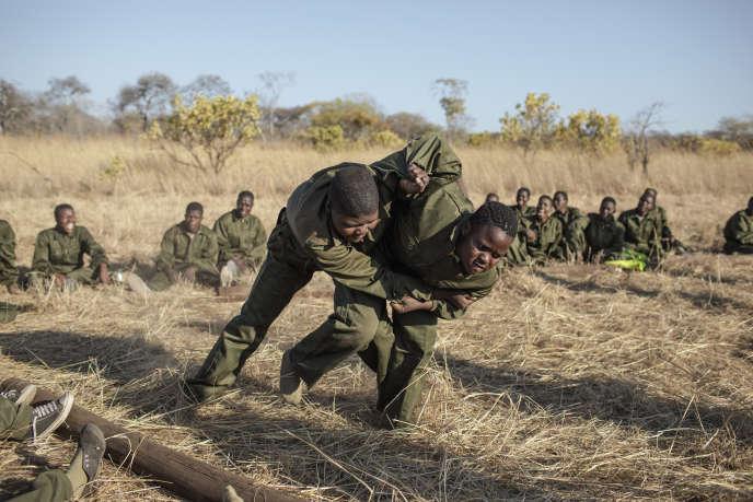 Des candidates participent à la sélection pour devenir ranger, dans la région de Phundundu, au Zimbabwe, le 18septembre 2019.