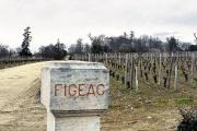 Figeac est le théâtre d'une guérilla entre deux vignobles historiques du bordelais.