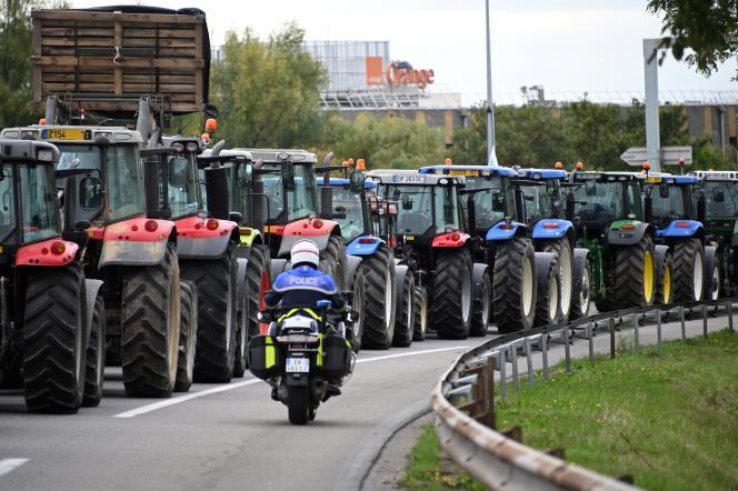 Blocage routier des agriculteurs à l'appel de la FNSEA et du syndicat des Jeunes Agriculteurs sur l'A4, près de Strasbourg, le 8 octobre 2019.