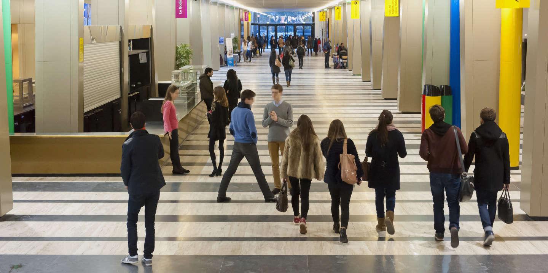 L'avenir pas si bien tracé des étudiants en double licence