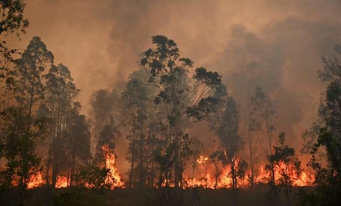 Một vụ hỏa hoạn đã tấn công thị trấn Bobin của Úc, cách Sydney 350 km về phía bắc vào ngày 9/11.
