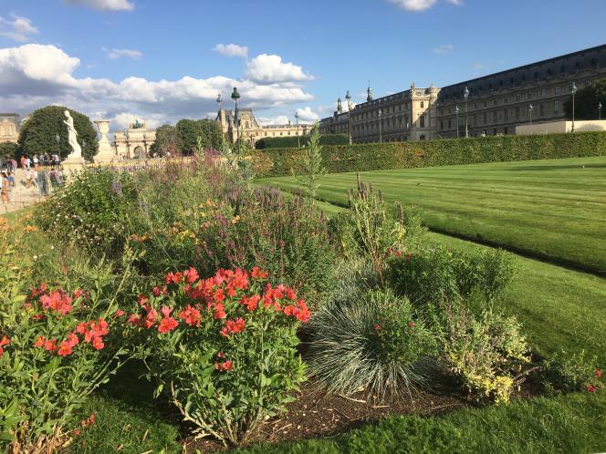 Parterre fleuri dans le jardin des Tuileries, dans le prolongement du Musée du Louvre (en août 2019).