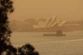 La côte est de l'Australie confrontée à des incendies hors normes