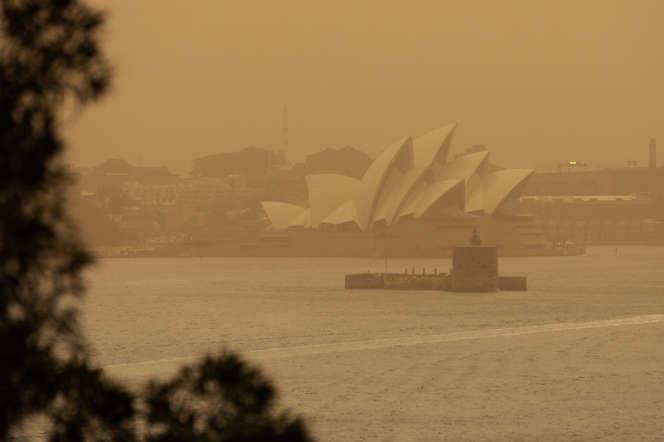 A Sydney, le 12 novembre.