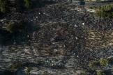 Vue aérienne de la manifestation contre le président chilien, Sebastian Piñera, le 12 novembre à Santiago.