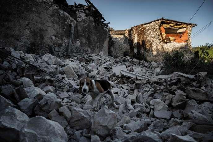 Des débris de pierres jonchent la rue à Le Teil, à l'ouest de Montélimar, touché par le séisme de magnitude 5, lundi 11 novembre.