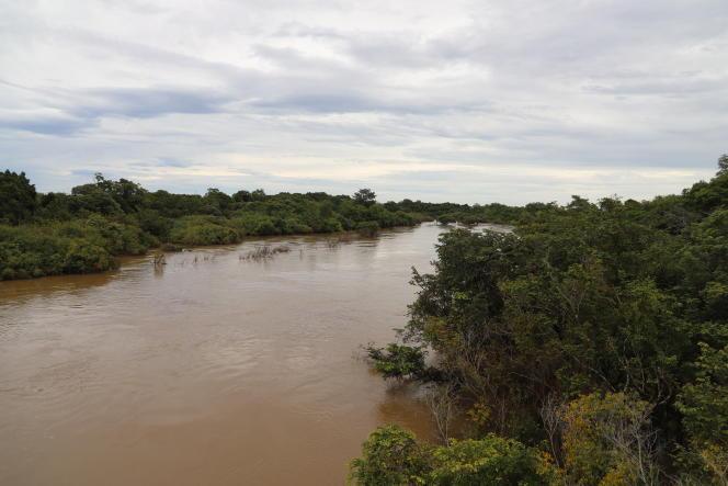 Dans le nord de la Côte d'Ivoire, le fleuve Comoé qui a donné son nom au parc, gigantesque réserve à la frontière du Burkina Faso en octobre 2019.