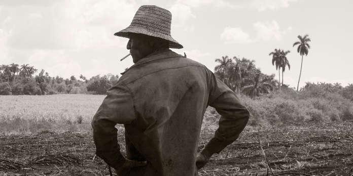 A Cuba, Pierre-Elie de Pibrac capte l'amertume des travailleurs du sucre