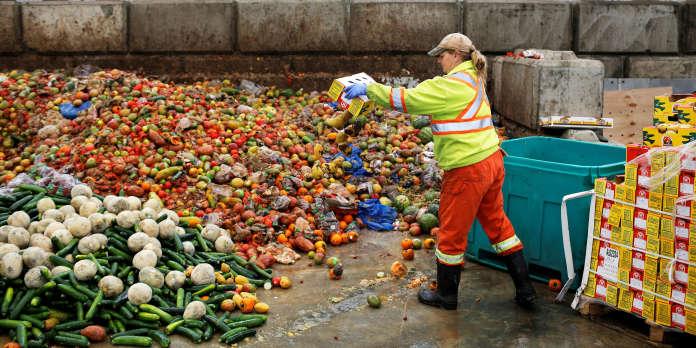 Plus d'une centaine d'articles de loi en débat pour lutter contre le gaspillage