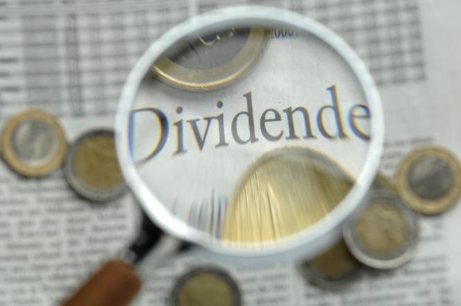 «Le taux d'imposition ayant diminué, nos entreprises risquent de choisir de moins investir afin de mieux rémunérer leurs actionnaires.»