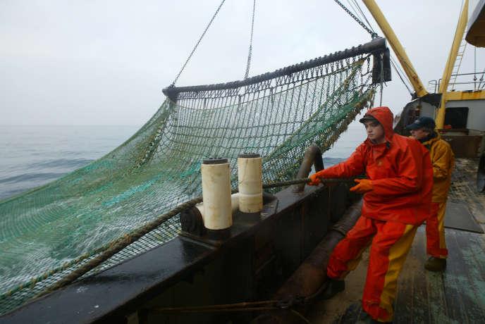 Des marins pêcheurs travaillent sur le pont d'un chalutier, lors d'une campagne de pêche dans la Manche en février 2006.